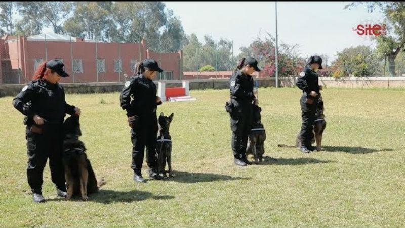 فيديو- حراس المغرب.. كواليس تدريب شرطيات سينوتقنية مغربيات لمواجهة الجريمة والدواعش