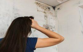 جدران منزلك ستتسبب لك بهذه الأمراض