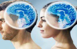 مقارنة بين دماغ المرأة والرجل