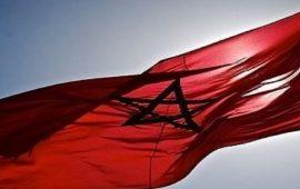 فنانون مغاربة يستنكرون حرق العلم الوطني