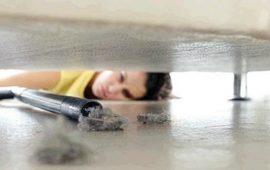 هل تعلمين أن الغبار المنزلي يسبب السمنة؟