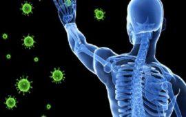 كيف تساعدك مناعتك في الوقاية من الإصابة بفيروس كورونا؟