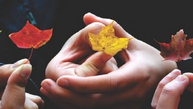 صورة تعرفي على أسباب جفاف اليدين في فصل الخريف