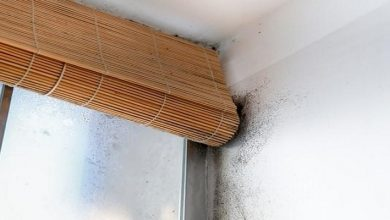 """صورة طريقتين سحريتين للتخلص من العفن و""""البرودة"""" بسقف منزلك"""