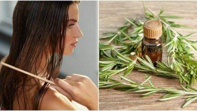 صورة عشبة طبيعية تساعد على تطويل الشعر