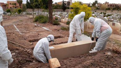 صورة حصيلة الأربعاء.. تسجيل 703 حالة جديدة مصابة بفيروس كورونا في المغرب