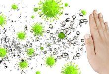 صورة 5 طرق لتقوية مناعة الجسم